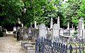 Coming-street-cemetery-sc1.jpg