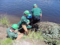 Connecticut River restoration Farilee VT6.jpg