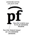 Consonne afriquée.png