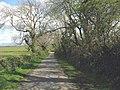 Country road by Tan-yr-Allt Farm - geograph.org.uk - 801334.jpg