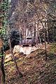 Covadonga 9307TM.jpg