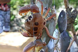 Kiamba, Sarangani - Seafoods, the second biggest income earner.