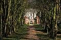 Cranborne Manor through avenue of Beech - geograph.org.uk - 373147.jpg