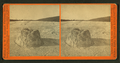Crater of Beehives, Giantess Mount behind, by I. W. Marshall 2.png