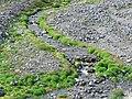 Creek (b7fa6dea22584d6aa932e6320e245c76).JPG