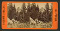 Crinoline Point, from Robert N. Dennis collection of stereoscopic views.png