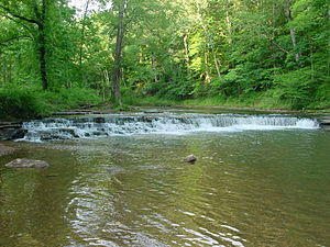 David Crockett State Park - Image: Crockett Falls in David Crockett State Park (Front View June 2005)