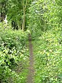 Croft footpath - geograph.org.uk - 1312783.jpg