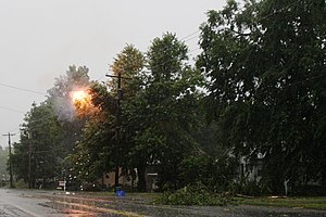 Power outage - Tree limbs creating a short circuit in electrical lines during a storm. This typically results in a power outage in the area supplied by these lines