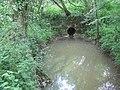 Culvert and pool - geograph.org.uk - 439278.jpg