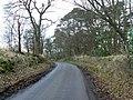 Curve through trees - geograph.org.uk - 1167864.jpg