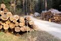 Cutting wood.png