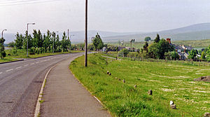 Cwmllynfell station site geograph-3361034-by-Ben-Brooksbank.jpg