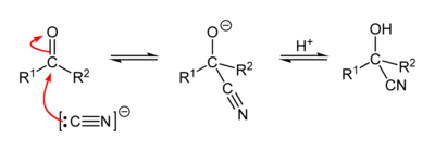 Mechanism of the cyanohydrin reaction