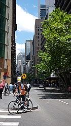Cyclist in Sydney