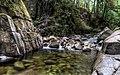 Cypress Creek (132024397).jpeg