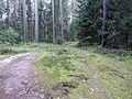 Degučių sen., Lithuania - panoramio (193).jpg
