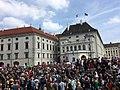 Demo Rücktritt Jetzt! - Strache Ibiza-Affäre 18. Mai 2019 2 (Wien).jpg
