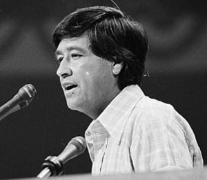 Jerry Brown - Cesar Chavez nominating Brown at the 1976 Democratic National Convention