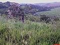 Descida do Ribeirão Salgado, SP-345 - panoramio.jpg