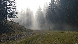 Fog in Lower Austrian Eisenwurzen