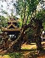Dhara Devi spirit house.jpg
