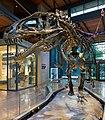 DinosaurGallery 04.jpg