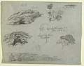 Drawing, Trees, Tree Tops, and a Wooded Bank, Saddleback, Maine, 1853 (CH 18193333).jpg