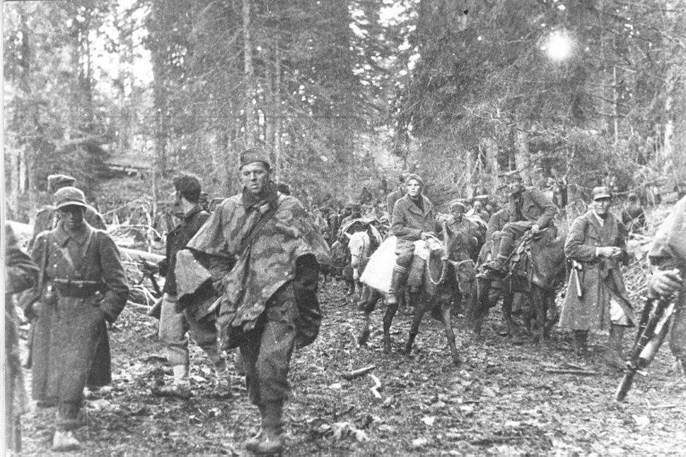 Druga proleterska divizija na Sutjesci