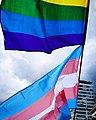 Dublin Trans Pride 2018 10.jpg