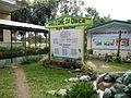 DupaxdelNorte,Nueva Vizcayajf7029 19.JPG