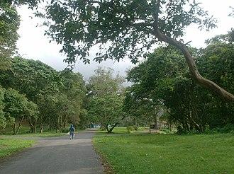 Yacambú National Park - Image: EL BLANQUITO