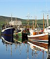 Early morning trawler scene in Dingle Harbour - geograph.org.uk - 16551.jpg