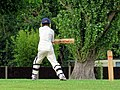 Eastons Cricket Club Sunday match, Little Easton, Essex, England 19.jpg