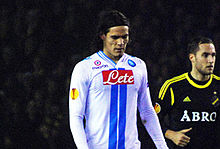 Edinson Cavani - Wiki Article
