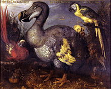 An oil painting depicting a red-feathered parrot with yellow wing tips; a large, ungainly, duck-like bird with grey, white and yellow feathers; a parrot with a black back, yellow breast and a yellow and black tail; and a brown-feathered bird with a long bill eating a frog