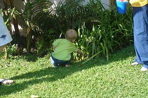 English: Child hunting for easter eggs in the ...