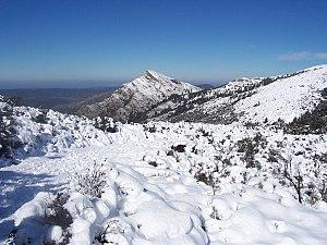 El Pichacho nevado en Alcala de los Gazules.JPG
