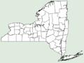 Eleocharis wolfii NY-dist-map.png