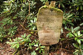 Ellicott Rock Wilderness July 2007.jpg