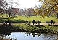 Englischer Garten Herbst-42.jpg