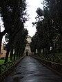 Eucalipti alley to San Paolo alle Tre Fontane.jpg