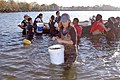 Experimental oyster reef creation off Soundview Park in the Bronx.jpg