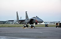 F-15E Strike Eagle MAKS-2011 (9).jpg