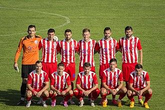 CS Minaur Baia Mare (football) - FCM Baia Mare squad 2015–16