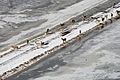 FEMA - 40496 - Aerial of flood effects in Minnesota - deer on the highway.jpg