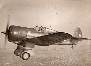 Argentine Air Force - FMA-built Curtiss-Hawk 75O