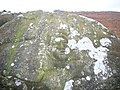 Face Carved On Boulder - geograph.org.uk - 668212.jpg