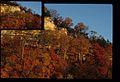 Fall Leaves on Trees (Missouri State Archives) (8203212541).jpg