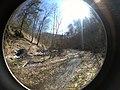 Fall Run Park in Shaler Township, late winter - 4.jpeg